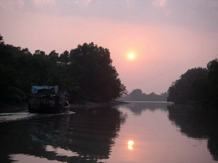 Sundarbans sunset